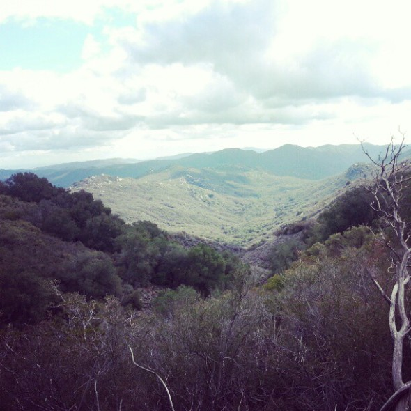Cleveland National Forest from Blue Jay Campground -- I cannot wait to get back out there!